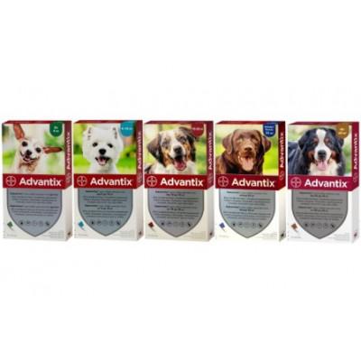 купити Advantix (Адвантикс) от блох и клещей для собак, 1пипетка в Одеси