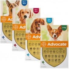 Advocate (Адвокат) Пипетки для собак от блох и глистов (1 пипетка)