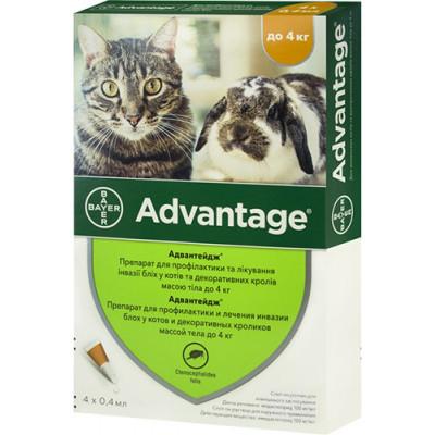 купити Advantage (Адвантейж)  от блох и власоедов для котов, кошек и кролей, 1 пипетка в Одеси