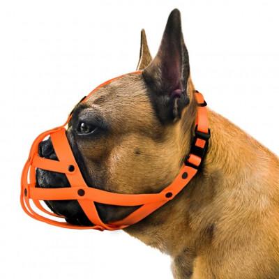 купити Bronzedog (Бронздог) Намордник водовідштовхувальний біотановий Французький бульдог в Одеси