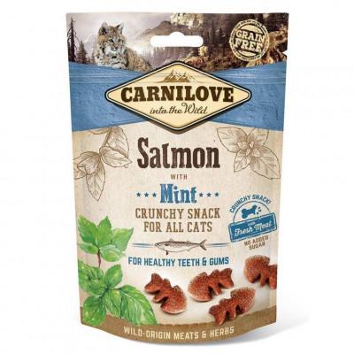 купити Carnilove Salmon with Mint Ласощі для кішок з лососем і м'ятою для здоров'я зубів і ясен 50 г в Одеси