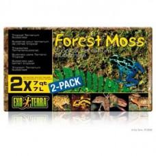 Hagen Exo Terra Forest Moss Наповнювач лісовий мох для рептилій 500 гр