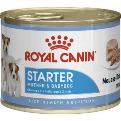 купити Royal Canin Starter Mousse мусс для щенков до 2-х месяцев в Одеси