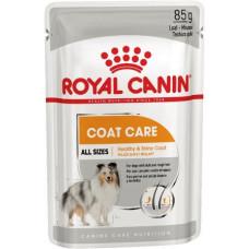 Royal Canin COAT CARE Влажный корм для собак разных размеров с тусклой и жесткой шерстью