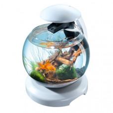 Tetra Акваріум Cascade Globe БІЛИЙ для півника і золотої рибки 6,8л