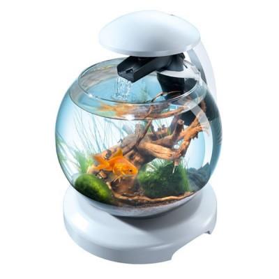 купити Tetra Акваріум Cascade Globe БІЛИЙ для півника і золотої рибки 6,8л в Одеси