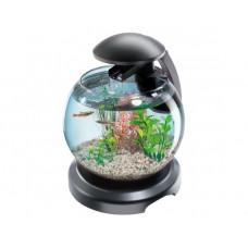 Tetra Акваріум Cascade Globe ЧОРНИЙ для півника і золотої рибки 6,8л