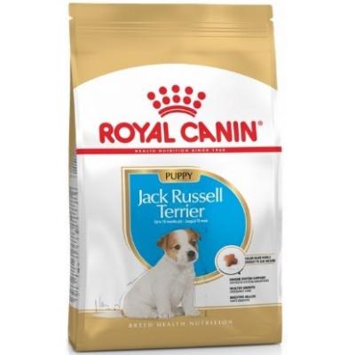 купити Royal Canin Jack Russell Junior Джек-рассел-терьер щенки до 10 месяцев в Одеси