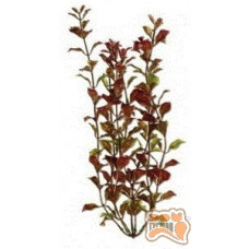Tetra RED LUDWIGIA (ХХL) пластикова рослина 44-47см