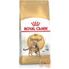 Royal Canin Bengal корм для дорослих кішок Бенгальскої породи