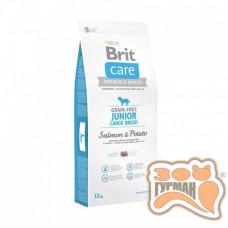 Brit Care (Брит Кеа) Grain-free JUNIOR LARGE BREED - беззерновой корм для молодых собак крупных пород (лосось/картофель)