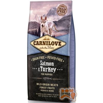 купити Carnilove Puppy Salmon & Turkey с лососем и индейкой для щенков в Одеси