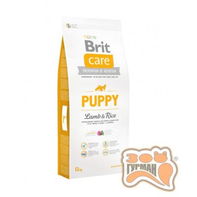 Brit Care (Брит Кеа) PUPPY ALL BREED Lamb & Rice - корм для щенков всех пород (ягненок/рис)