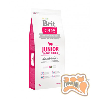 купити Brit Care (Брит Кеа) Junior LARGE BREED Lamb & Rice - корм для щенков крупных пород (ягненок/рис) в Одеси