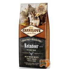 Carnilove Adult Raindeer с мясом северного оленя для взрослых собак всех пород