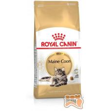 Royal Canin Maine Coon Adult для дорослих кішок породи мейн-кун