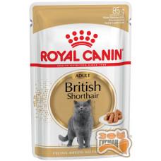 Royal Canin British Shorthair Adult вологий корм (в соусі)