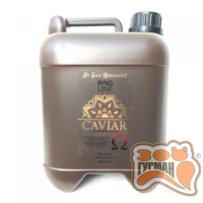 Шампунь Iv San Bernard Caviar Мягкая очистка и питание SHACAV5000, 5л
