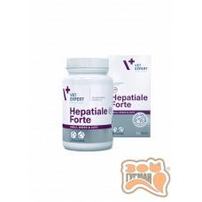 VetExpert Hepatiale Forte Small Dog/Cat, поддержания функций печени собак мелких пород и кошек, 40капс