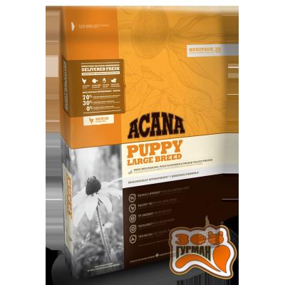 купити Acana Puppy LARGE BREED для щенков крупных пород в Одеси