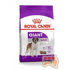 Royal Canin GIANT ADULT для собак старше 18/24 місяців дуже великих розмірів