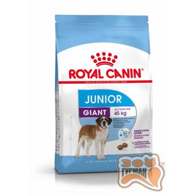 купити Royal Canin GIANT JUNIOR для щенков собак очень крупных размеров в Одеси