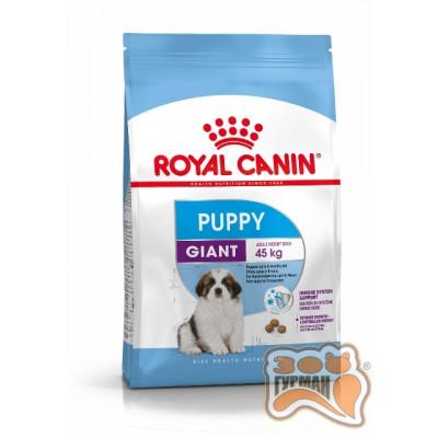 купити Royal Canin GIANT PUPPY для щенков собак очень крупных размеров в Одеси