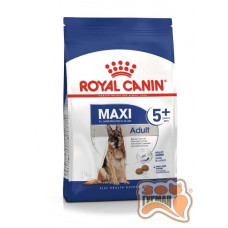Royal Canin MAXI ADULT 5+ для собак великих розмірів з 5 до 8 років