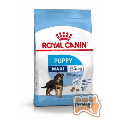 Royal Canin MAXI PUPPY для щенков с 2 до 15 месяцев собак крупных размеров