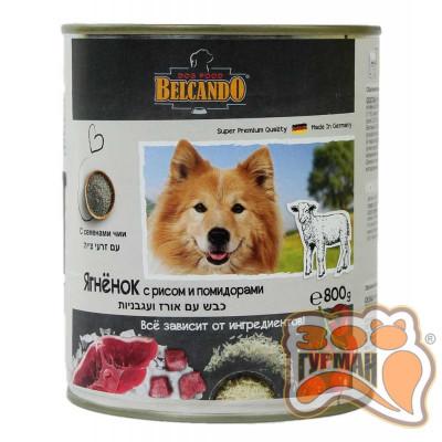 купити Belcando Ягненок с рисом и помидорами в Одеси