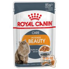 Royal Canin Intense Beauty желе для дорослих котів віком від 12 місяців для підтримання здоров'я шкіри та краси шерсті.