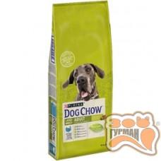 Dog Chow Large Breed для взрослых собак крупных пород с индейкой 14кг