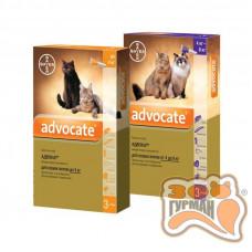 Advocate (Адвокат) капли для кошек и кролей, от блох, глистов, клещей, 1 пипетка