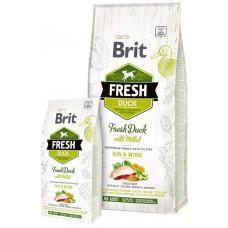 Brit Fresh (Брит Фрэш) Adult Active Duck with Millet - беззерновой корм для активных собак всех пород (утка/пшено)