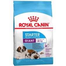 Royal Canin GIANT STARTER для цуценят крупних порід до 2-х місяців, вагітних та годуючих сук