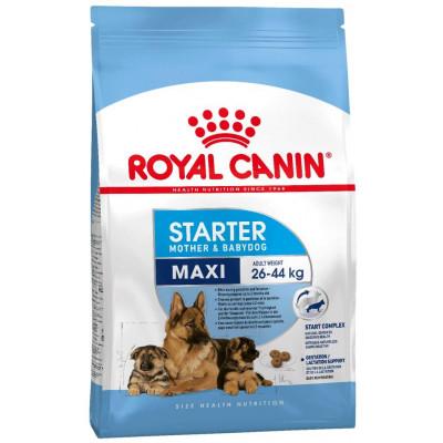 купити Royal Canin MAXI STARTER  для щенков крупных размеров в период отъема до 2-месячного возраста в Одеси